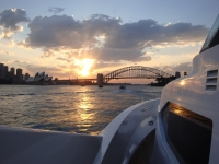 aqa-cruising-sydney-harbour