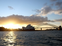 Syd Harbour